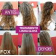 Escova Progressiva Fox Gloss Inteligente Kit 2x1L - Original