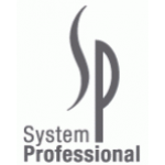 SP System Professional