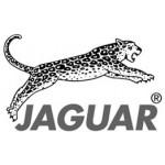 Jaguar Solingen